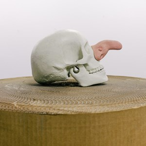 Afterthought (Skull and nose) by Glen Hayward contemporary artwork