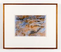 Umwelt of the Grey Box Beetle by John Wolseley contemporary artwork print