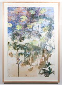 Nymphaea Lilies and Rakay by John Wolseley contemporary artwork painting