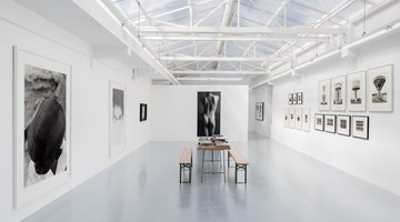 Contemporary art exhibition, Group Exhibition, Une collection de photographies at rodolphe janssen, Brussels