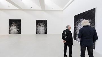 Contemporary art exhibition, Angel Vergara, Straatman: Acts & Paintings at Axel Vervoordt Gallery, Antwerp