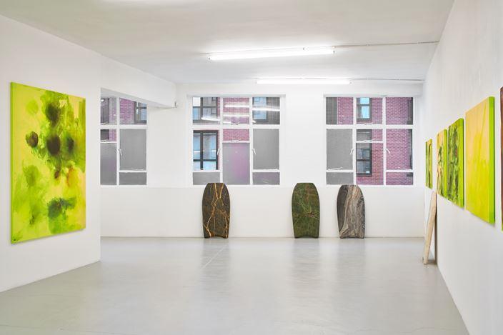 Exhibition view: Reena Spaulings,Lion Hunt, Campoli Presti, London (21 March–18 May 2019). Courtesy Campoli Presti.