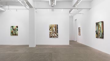 Contemporary art exhibition, Kyle Dunn, Into Open Air at P·P·O·W Gallery, West 22nd Street, New York