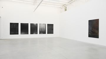 Contemporary art exhibition, Dirk Braeckman, Dear Deer , at Zeno X Gallery, Antwerp
