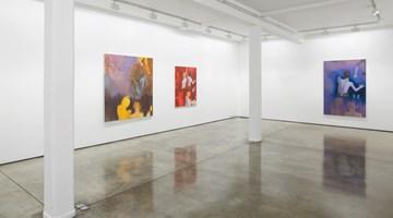 Contemporary art exhibition, Thomas Eggerer, Ozone at Maureen Paley, London
