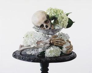 Skull with Hydrangea by Michael Zavros contemporary artwork