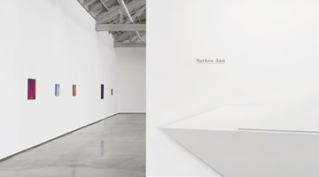 Contemporary art exhibition, Markus Amm, Markus Amm at David Kordansky Gallery, Los Angeles