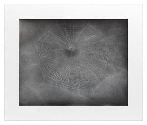 Untitled (Web 3) by Vija Celmins contemporary artwork print