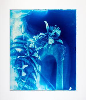 Blood Blue No.19 by Hu Weiyi contemporary artwork
