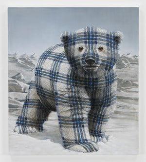 Polar Bear Cub (North Slope, AK) by Sean Landers contemporary artwork