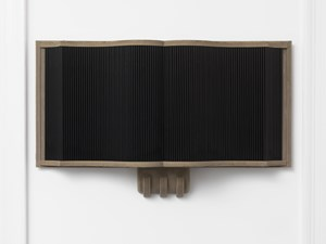 Stranded Asset by Sam Lewitt contemporary artwork