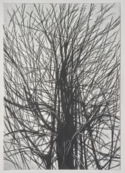 Han Jin, There is a crack in Everything #2(2021). Pencil on cotton paper. 100 x 71 cm. Courtesy the artist and ONE AND J. Gallery.