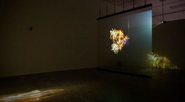 Contemporary art exhibition, Lu Lei, Apichatpong Weerasethakul, First Spring - Chapter 4 at ShanghART, Beijing, China