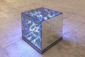 A Sight to Behold by Brigitte Kowanz contemporary artwork