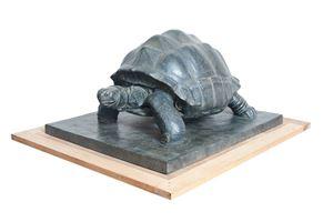 Turtle 龟 by Patrick Bintz contemporary artwork