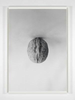 Fall I by Becky Beasley contemporary artwork