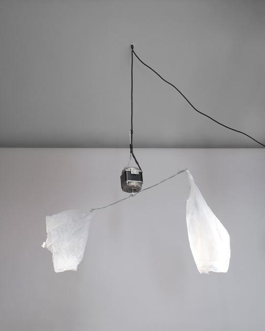 Fly Repellent, 2012 (For Parkett 91) by Monika Sosnowska contemporary artwork