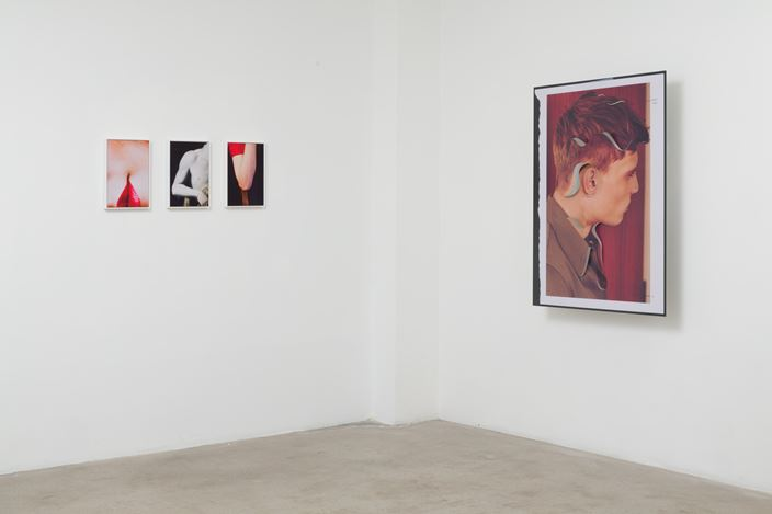 Exhibition view: Amie Dicke, ONE-LINER, Anat Ebgi, Los Angeles (11 January–16 February 2020). Courtesy Anat Ebgi.
