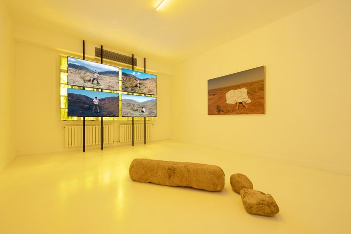 Exhibition view: Yao Cong, Flies beyond the Clouds, Capsule Shanghai, Shanghai (17 July–28 August 2021).Courtesy Capsule Shanghai.