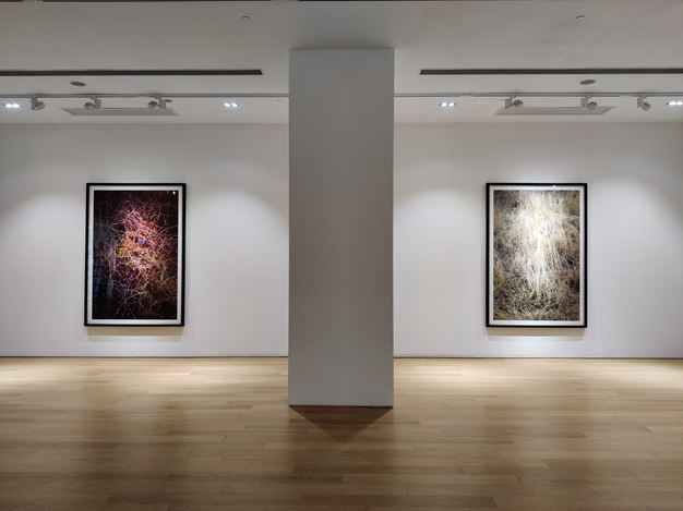 Exhibition view: Feng Yan, Solo Exhibition, Tang Contemporary Art, Hong Kong (13 February–13 March 2020). CourtesyTang Contemporary Art.