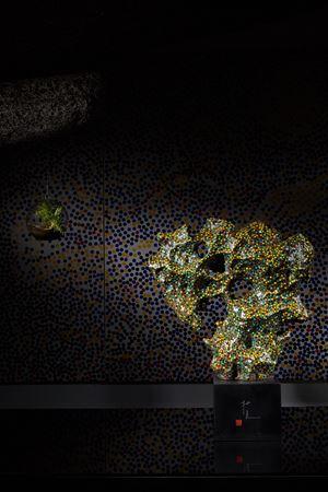 CMYK - Tai Hu Stone No.1 by Yang Mian contemporary artwork