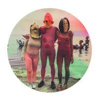 Salton Friends by Cecilia Bengolea contemporary artwork print