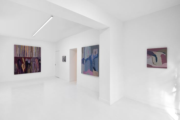 Exhibition view: Miranda Fengyuan Zhang, A World Without Us, Capsule Shanghai, Shanghai (16 January–27 February 2021). Courtesy Capsule Shanghai.