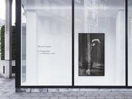 """David Noonan<br><span class=""""oc-gallery"""">Xavier Hufkens</span>"""