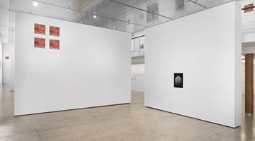 Contemporary art exhibition, Peter Piller, Geduld at Capitain Petzel, Berlin