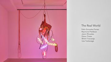 Contemporary art exhibition, Group Exhibition, The Real World at David Zwirner, Hong Kong