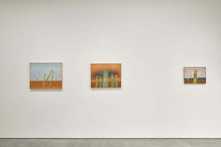 Exhibition view:Co Westerik, body and landscape, Sadie Coles HQ, Kingly Street, London (19 September–2 November 2019). Courtesy Sadie Coles HQ.