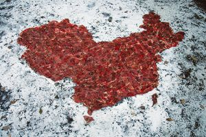 Meat Map I-IV by Charwei Tsai contemporary artwork