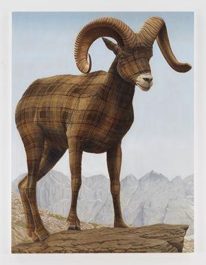 Big Horn Sheep by Sean Landers contemporary artwork