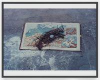 Sinnlicher Marmor (Sensual Marble) by Lothar Baumgarten contemporary artwork photography, print