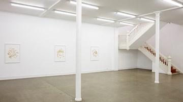 Contemporary art exhibition, Alicia Frankovich, Alicia Frankovich at Starkwhite, Auckland