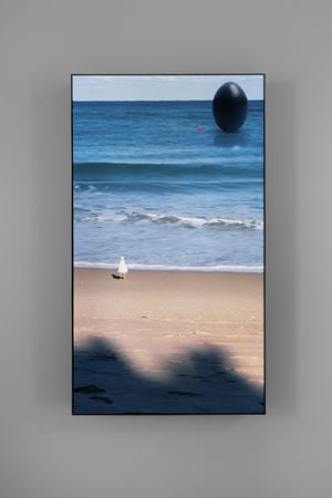 South Beach Seagull by Rachel Rose contemporary artwork sculpture, moving image