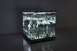 Realm of Possibility by Brigitte Kowanz contemporary artwork