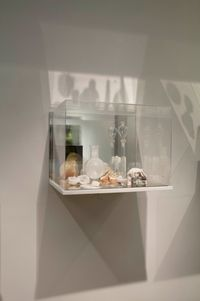 What Colour is the Sacred? (White) by Janet Laurence contemporary artwork sculpture