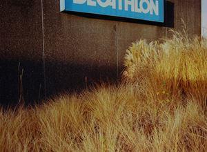 Decathlon by Samuel Laurence Cunnane contemporary artwork