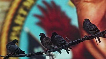 Contemporary art exhibition, Cheng Ran, Selected Films at Galerie Urs Meile, Lucerne