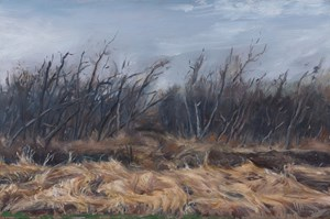 Copse 雜樹 by Lu Liang contemporary artwork