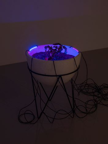 Exhibition view: Haroon Mirza: ããã – Fear of the Unknown remix, Lisson Gallery, New York (3 March–8 April 2017). Courtesy Lisson Gallery, New York.