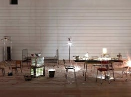 Mona Hatoum's internal organs to feature in Tate Modern show