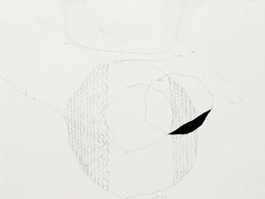 Im Flug gefangen, #33 by Jürgen Partenheimer contemporary artwork