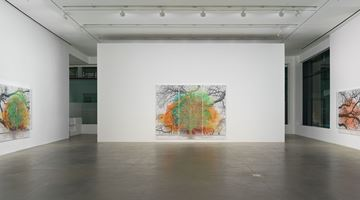Contemporary art exhibition, Charles Gaines, Multiples of Nature, Trees and Faces at Hauser & Wirth, London