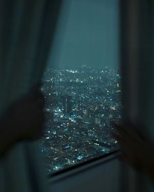 Park Hyatt Hotel, Tokyo (Curtains) by Alec Soth contemporary artwork