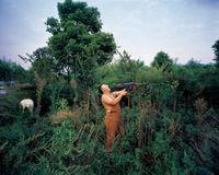 Bear & Bear No.4 by Ji Yu contemporary artwork photography