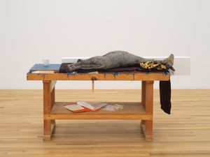 Stall by Liz Magor contemporary artwork sculpture