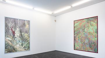 Contemporary art exhibition, Thomas Hämén, Tumble Through the Underbrush at Luis Adelantado Valencia