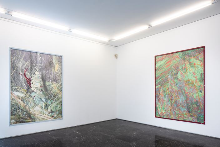 Exhibition view: Thomas Hämen, Tumble Through the Underbrush, Luis Adelantado Valencia  (15 May–15 September 2020). Courtesy Luis Adelantado Valencia.